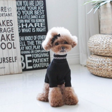 BLACK BLING BLING DOG TURTLENECK