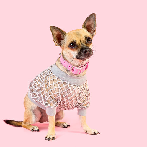 GREY MESH'N AROUND DOG TOP