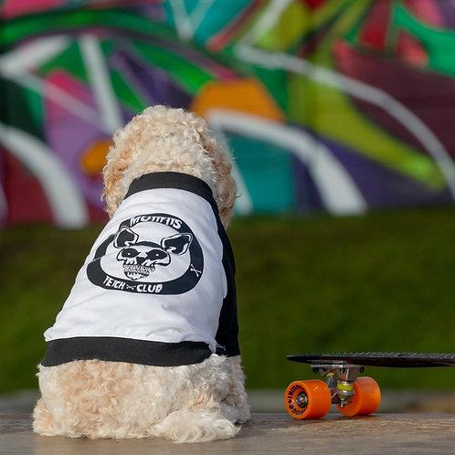 MUTTFITS FETCH CLUB RAGLAN DOG T-SHIRT
