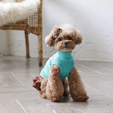 TIFFANY BLUE DOG TANK