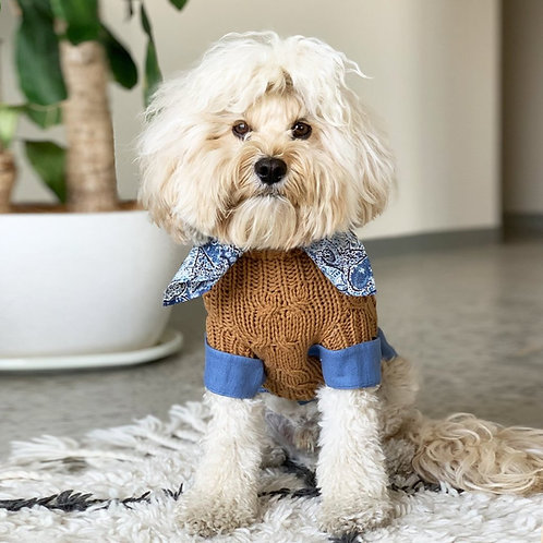 TOFFEE MERINO WOOL CABLE KNIT DOG SWEATER