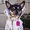 Thumbnail: WHITE FAUX LEATHER BIKER DOG JACKET