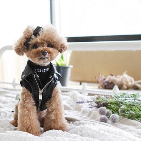 BLACK FAUX LEATHER BIKER DOG JACKET