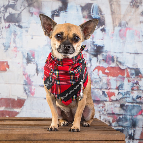 PUNKS NOT DEAD RED DOG BANDANA