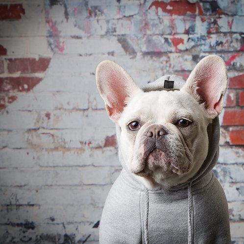 ROCKY BALBOA DOG HOODIE