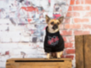 Bambi Slipdog bandana wall final.jpg