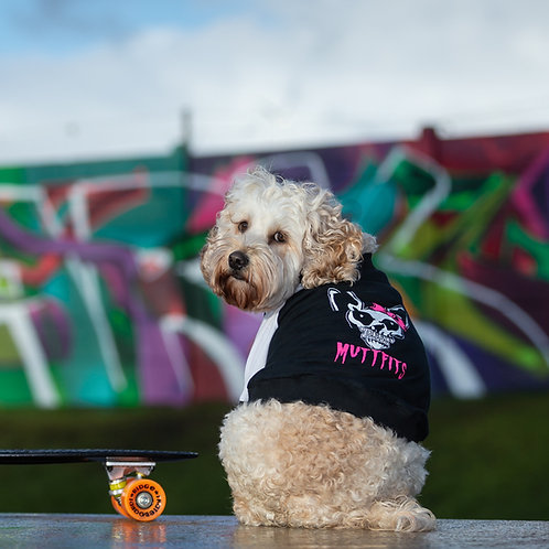 MISS MUTTFITS RAGLAN DOG TOP