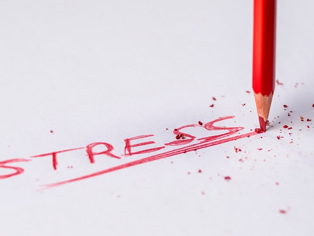Stress Management: Your Diet Can Help You to Master It
