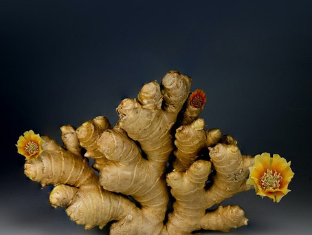 Ginger Oil Benefits: Treating Common Health Issues & Lymphatic Drainage