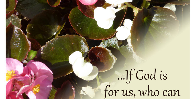 ...If God is for us - Romans 8:31 (Print)