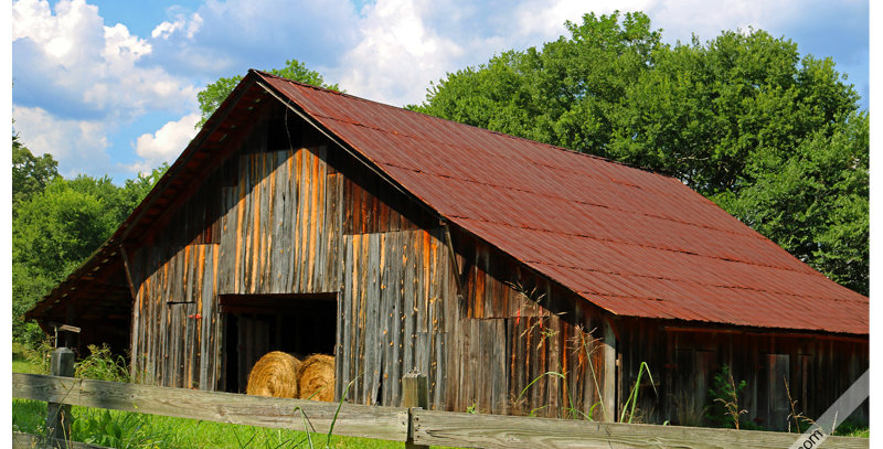 Barn 1169 (Metal) - Images by Wheeler