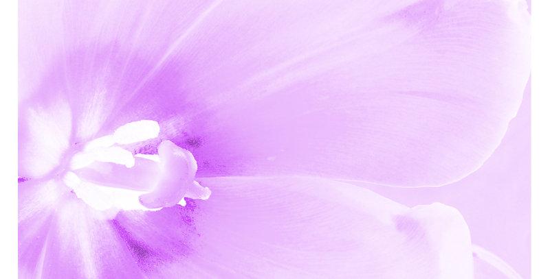 Soft Florals 13 - Light Violet (Metal)