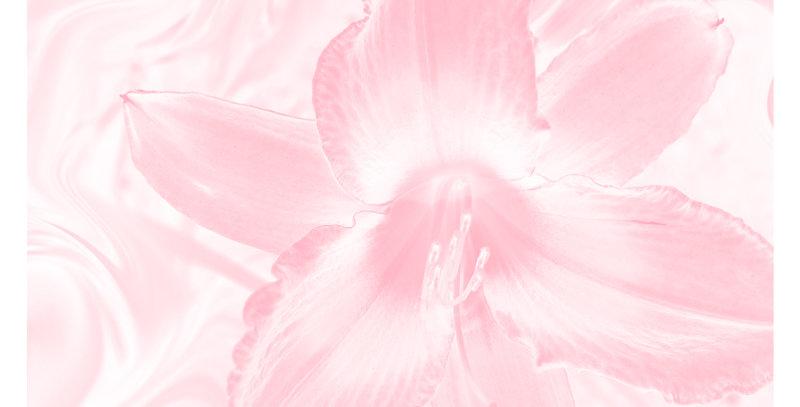 Soft Florals 1 - Blush Pink (Print)
