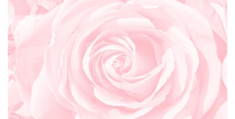 Soft Florals 5 - Blush Pink (Print)