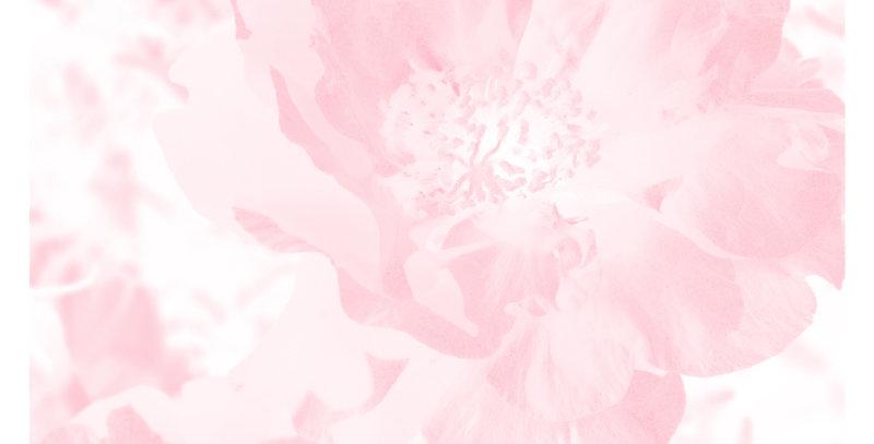 Soft Florals 11 - Blush Pink (Print)