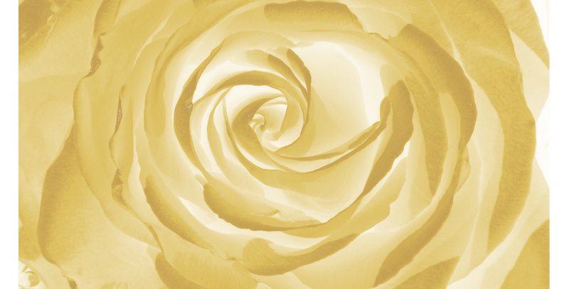 Soft Florals 9 - Golds (Metal)