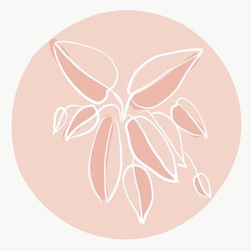 Inspired in rose.JPG