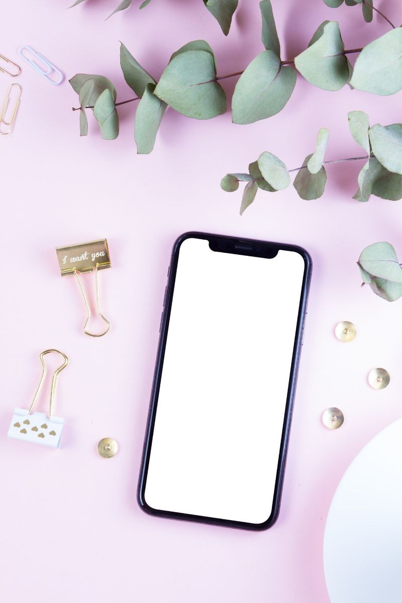 image of a cellphone on a pink background with binder clilps and eucalyptus leaves