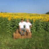 Joe Lucas Sunflowers.jpg