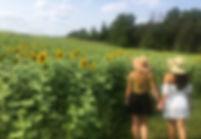 sunflower 2 girls.jpg