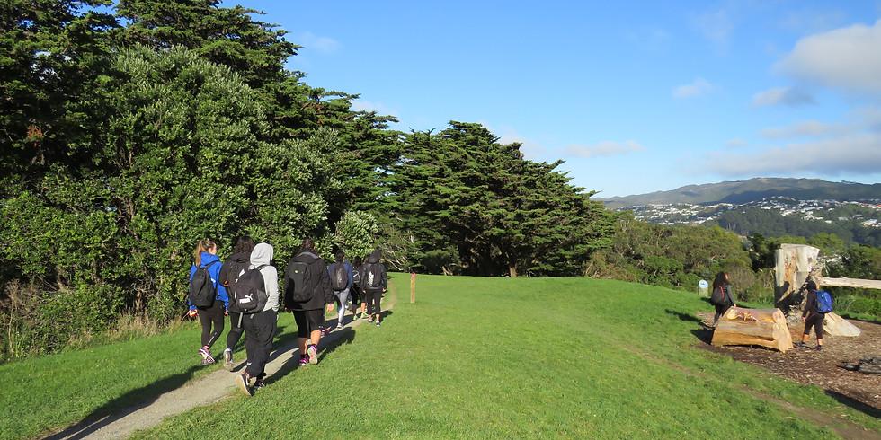 Mt Vic Walk // Wellington City
