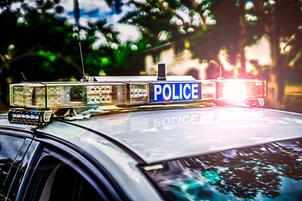 Police Car Lights - Day.jpg