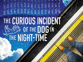 """Curious Incident"" at RepSTL!"