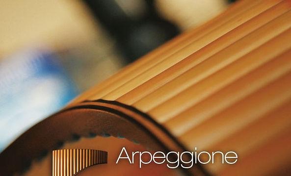image-cover-CD-Arpeggione_edited.jpg