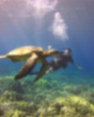 O and turtle.jpg