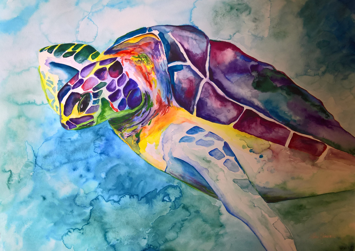 Turtle #2 Watercolor 22x30   $500.00  SOLD