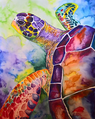 Turtle #3 Watercolor 22x30 SOLD