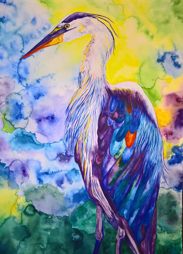 Heron #1 Watercolor 22x30   $500.00