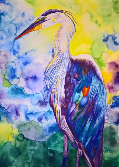 Heron #1 Watercolor 22x30 $500