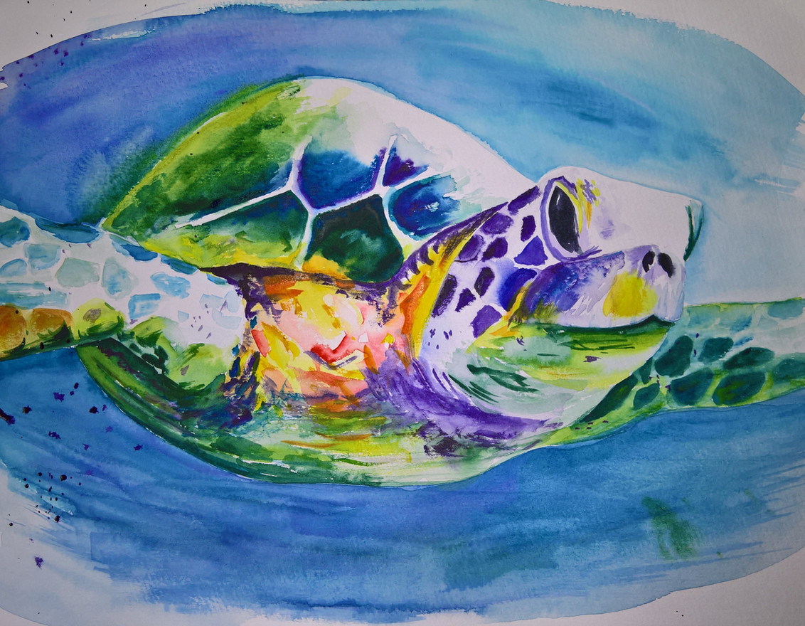 Turtle #1 Watercolor 11x14 $200 SOLD