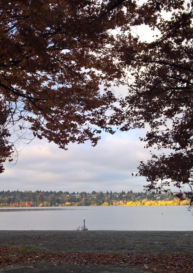 Greenlake in Fall