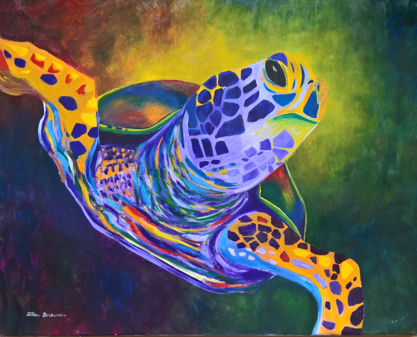 Turtle#5 Oil 16x20  $350.00