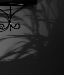 A sombra da noite