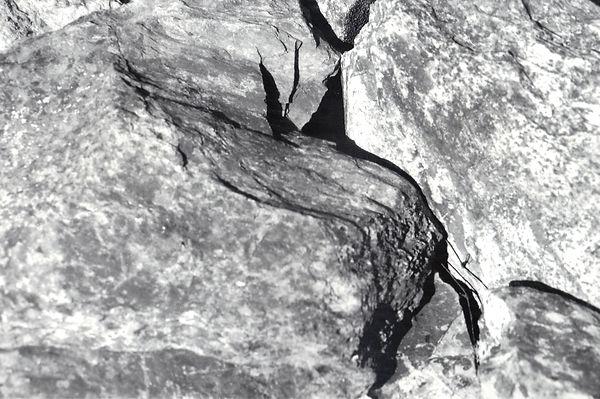 Abstract 6.jpg