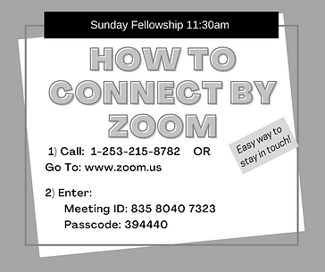 How to Connect by Zoom.png