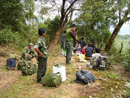 Project (Completed)  Survey of lar gibbons in Yunnan