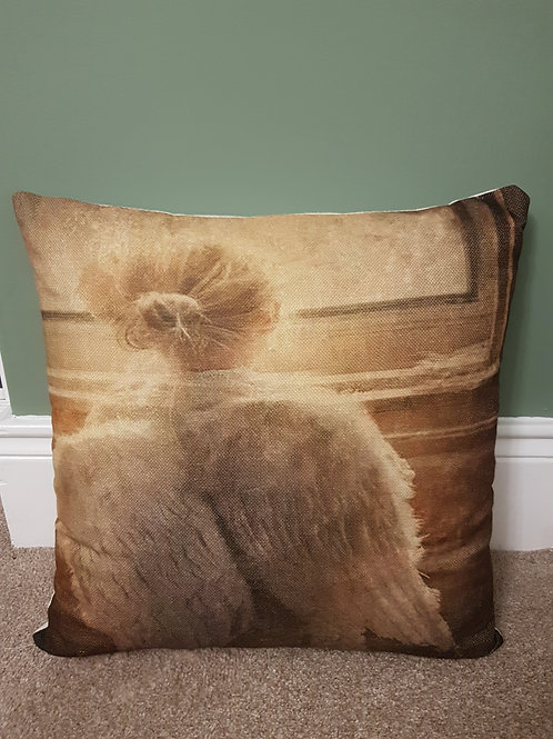 Beautiful Angel Cushion