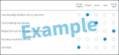 Example Everything DiSC assessment items