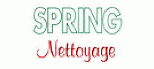 spring nettoyage.jpg
