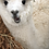 Thumbnail: Alpaca Dryer Ball