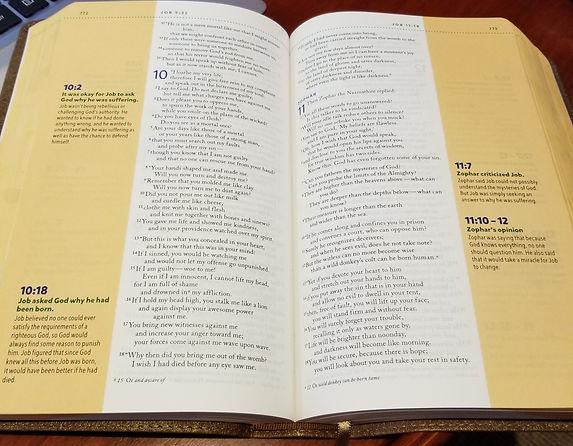 BiblePicJob9.jpg