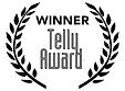 Telly Award.png