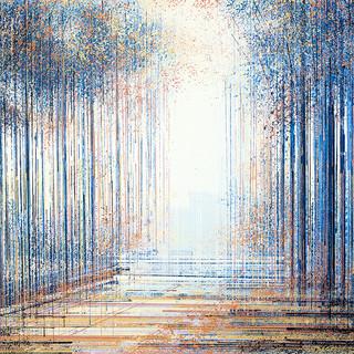 Light Through Trees At Twilight