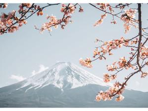 AROUND MY KITCHEN* : LE JAPON