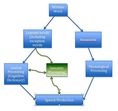 Theoretical  models of reading - better informed but none the wiser?
