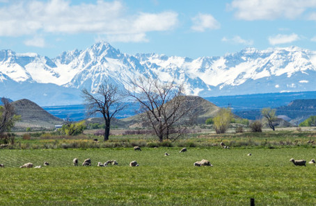 What can Montrose, Colorado offer photographers?